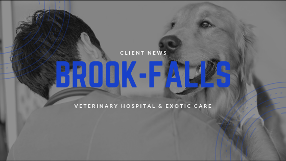 Business Booms for Brook-Falls Veterinary Hospital & Exotic Care